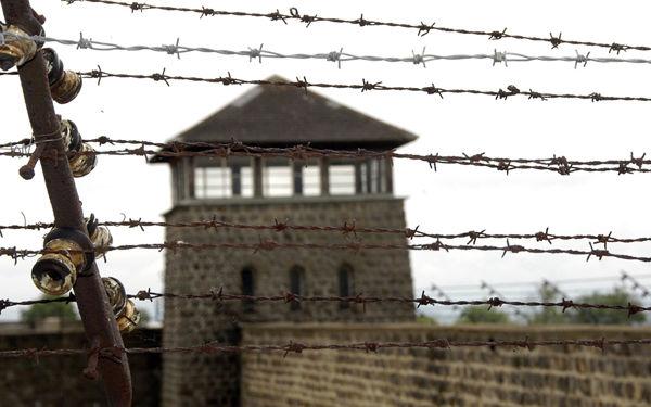 Mauthausen single frauen. Steyregg mdels kennenlernen